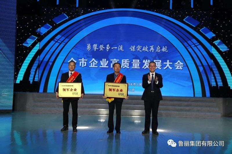 鲁丽集团喜获高质量发展多项荣誉